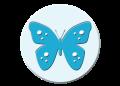 bula-bug-logo-icon.png