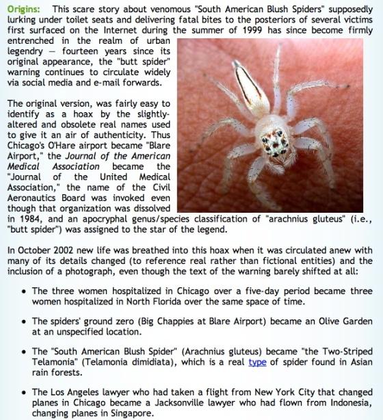 spider story 1