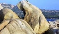 23 Bizarre Animal-Shaped Rocks Sculpted ByNature
