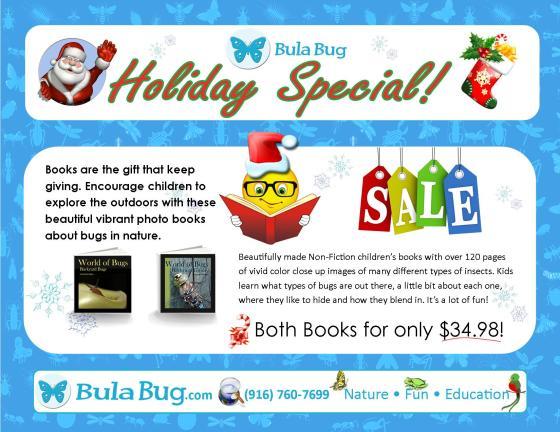 Bula Bug Christmas Special